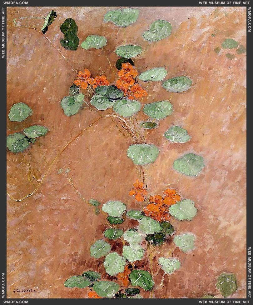 Nasturtiums 1892 by Caillebotte, Gustave