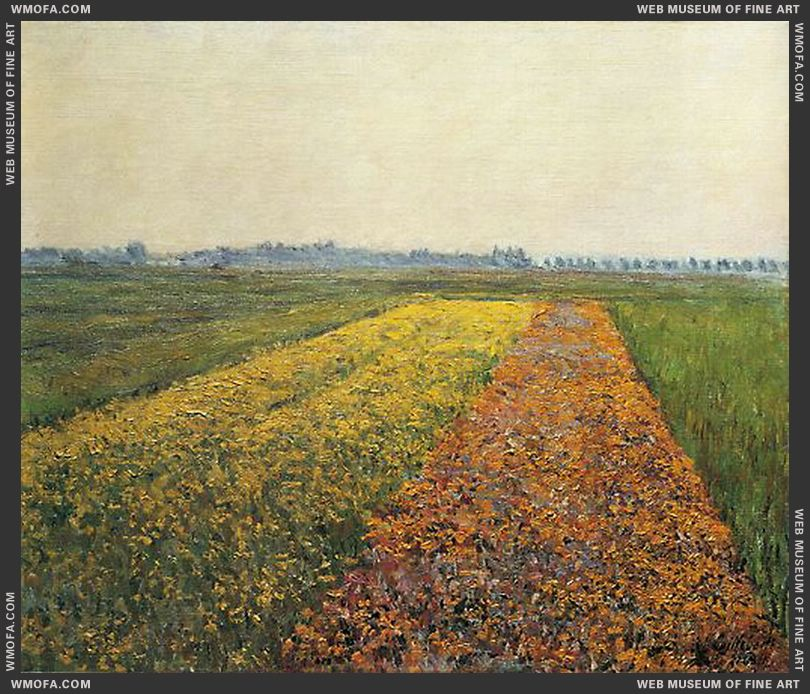 The Yellow Fields at Gennevilliers 1884 by Caillebotte, Gustave